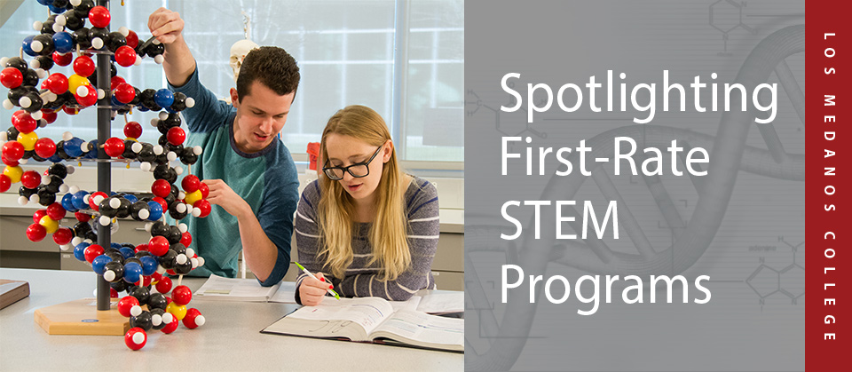 LMC_spotlighting_STEM